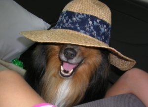 Buddy with hat